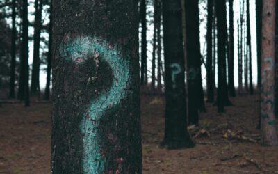Die 5-Why-Methode: Problemen auf den Grund gehen